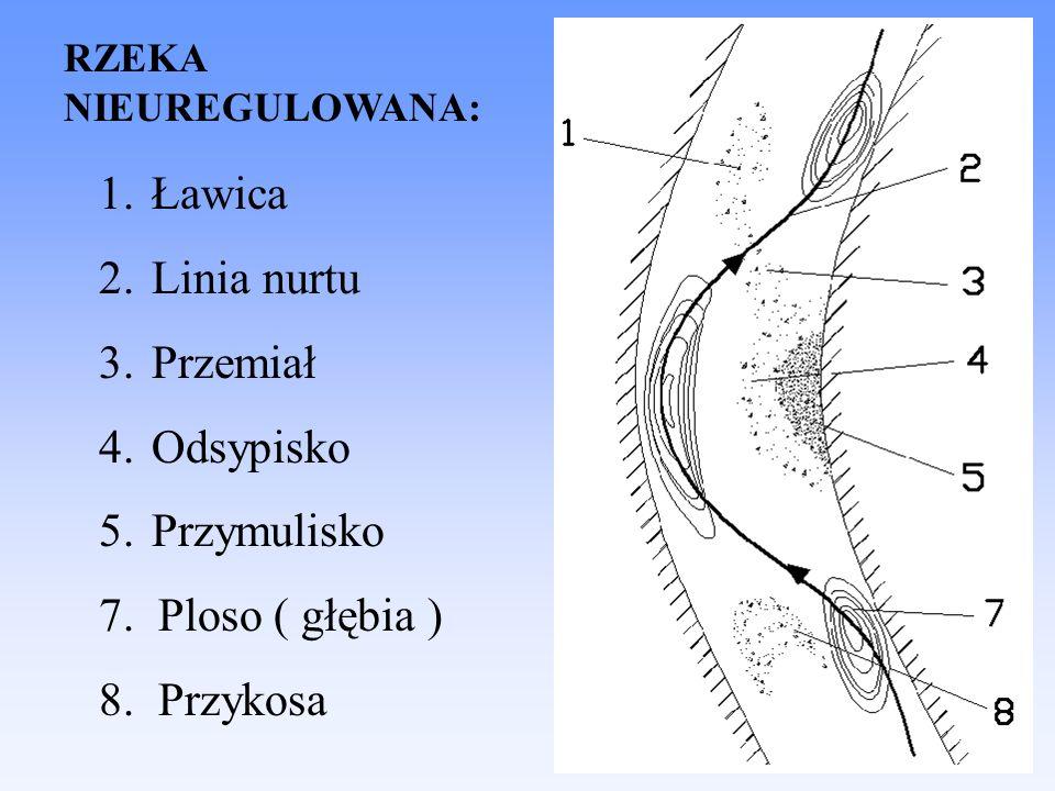 Ławica Linia nurtu Przemiał Odsypisko Przymulisko 7. Ploso ( głębia )