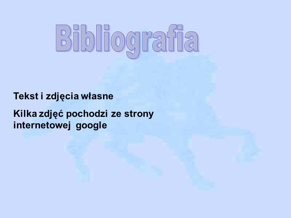 Bibliografia Tekst i zdjęcia własne
