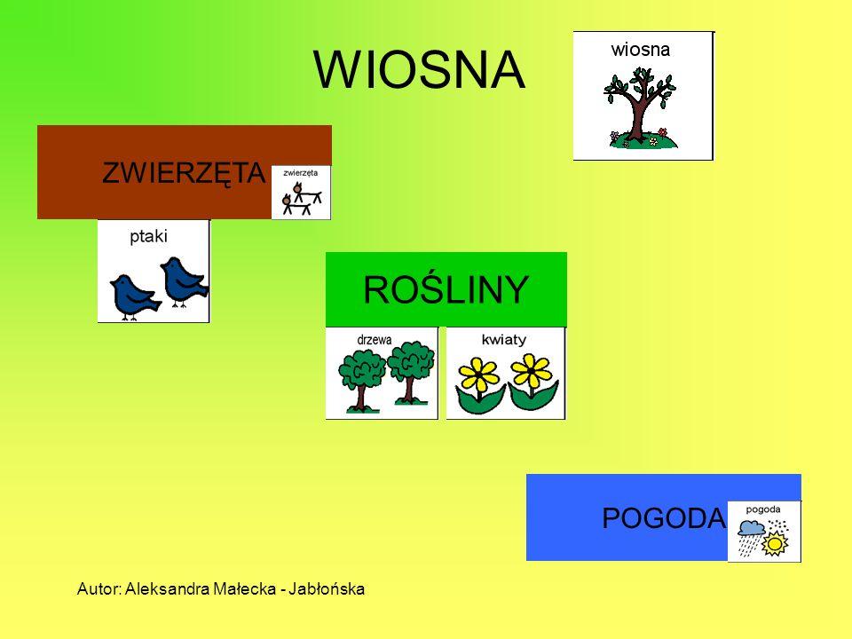 WIOSNA ZWIERZĘTA ROŚLINY POGODA Autor: Aleksandra Małecka - Jabłońska