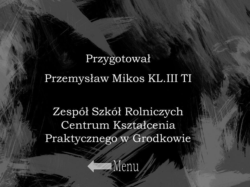 Menu Przygotował Przemysław Mikos KL.III TI