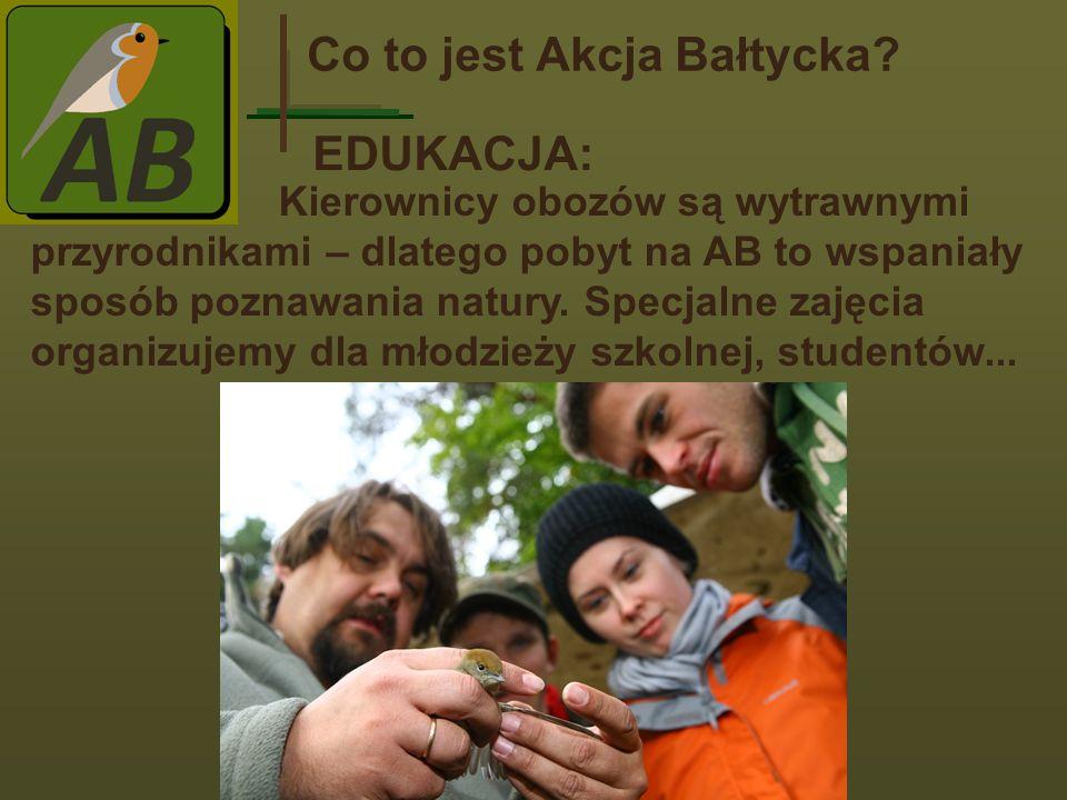 Co to jest Akcja Bałtycka
