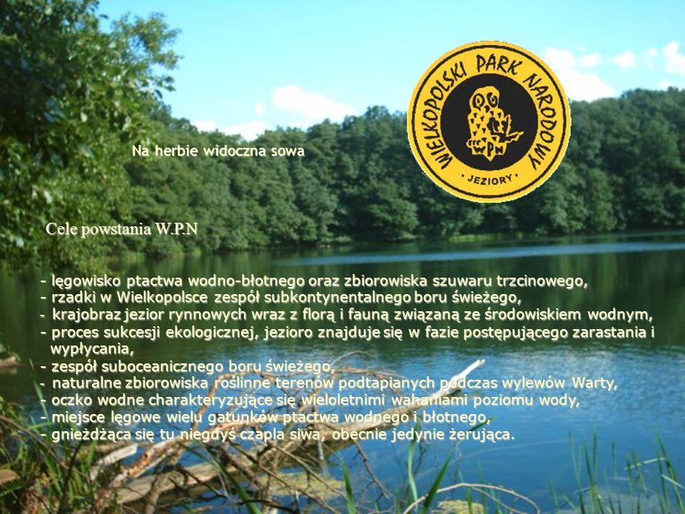 Cele powstania W.P.N Na herbie widoczna sowa