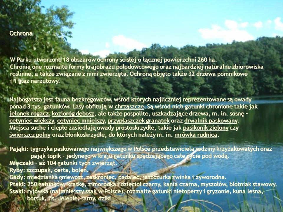 Ochrona W Parku utworzono 18 obszarów ochrony ścisłej o łącznej powierzchni 260 ha.