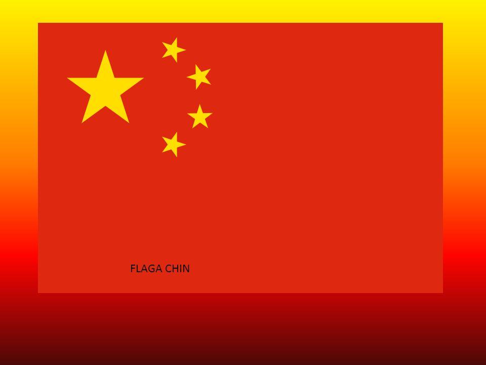 FLSAF FLAGA CHIN