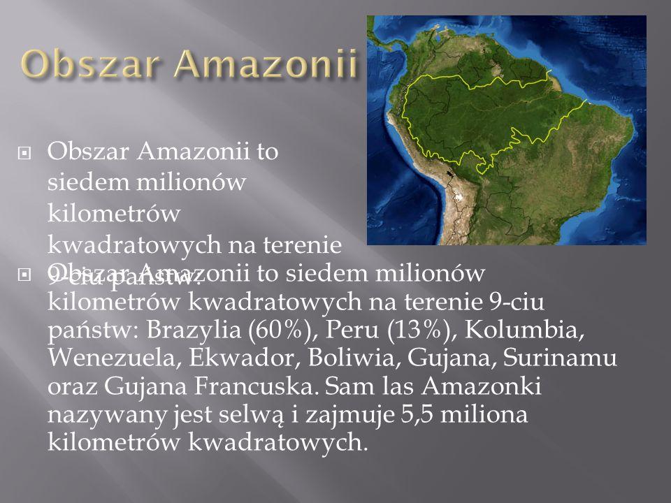 Obszar Amazonii Obszar Amazonii to siedem milionów kilometrów kwadratowych na terenie 9-ciu państw:
