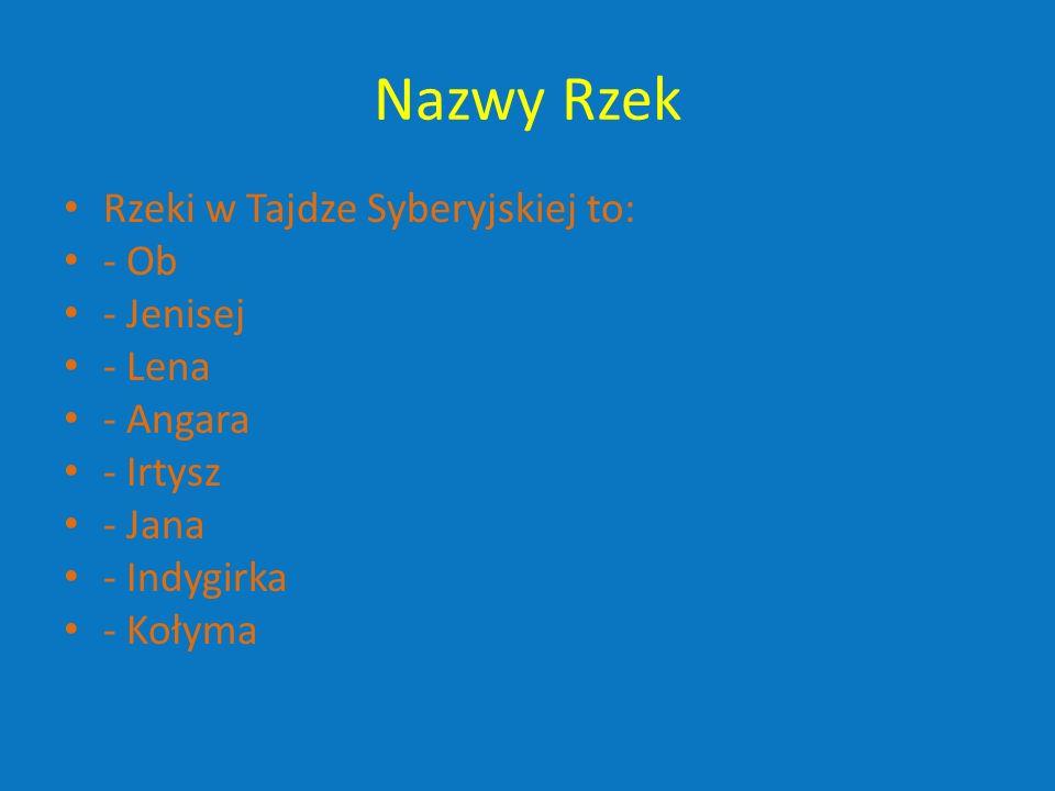 Nazwy Rzek Rzeki w Tajdze Syberyjskiej to: - Ob - Jenisej - Lena