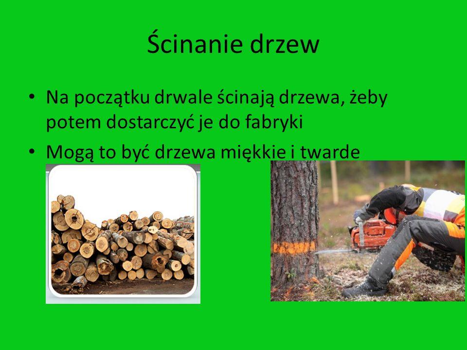 Ścinanie drzewNa początku drwale ścinają drzewa, żeby potem dostarczyć je do fabryki.