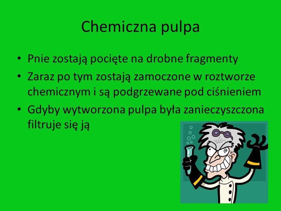 Chemiczna pulpa Pnie zostają pocięte na drobne fragmenty