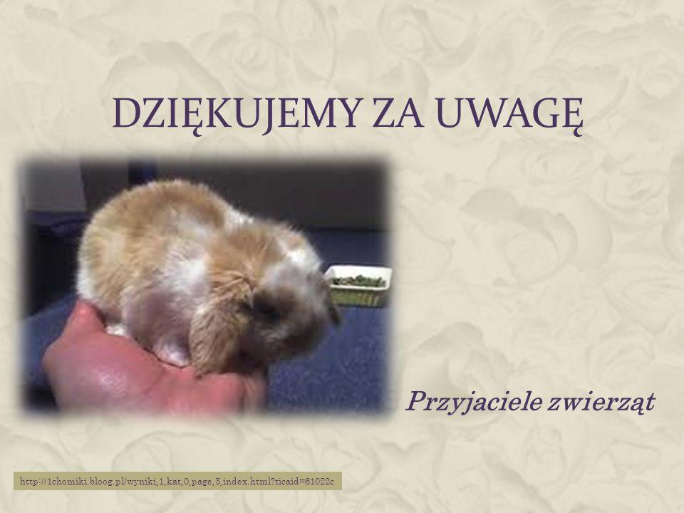 Dziękujemy za uwagę Przyjaciele zwierząt