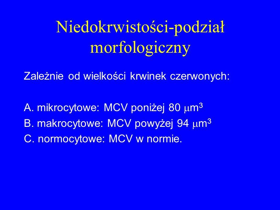 Niedokrwistości-podział morfologiczny