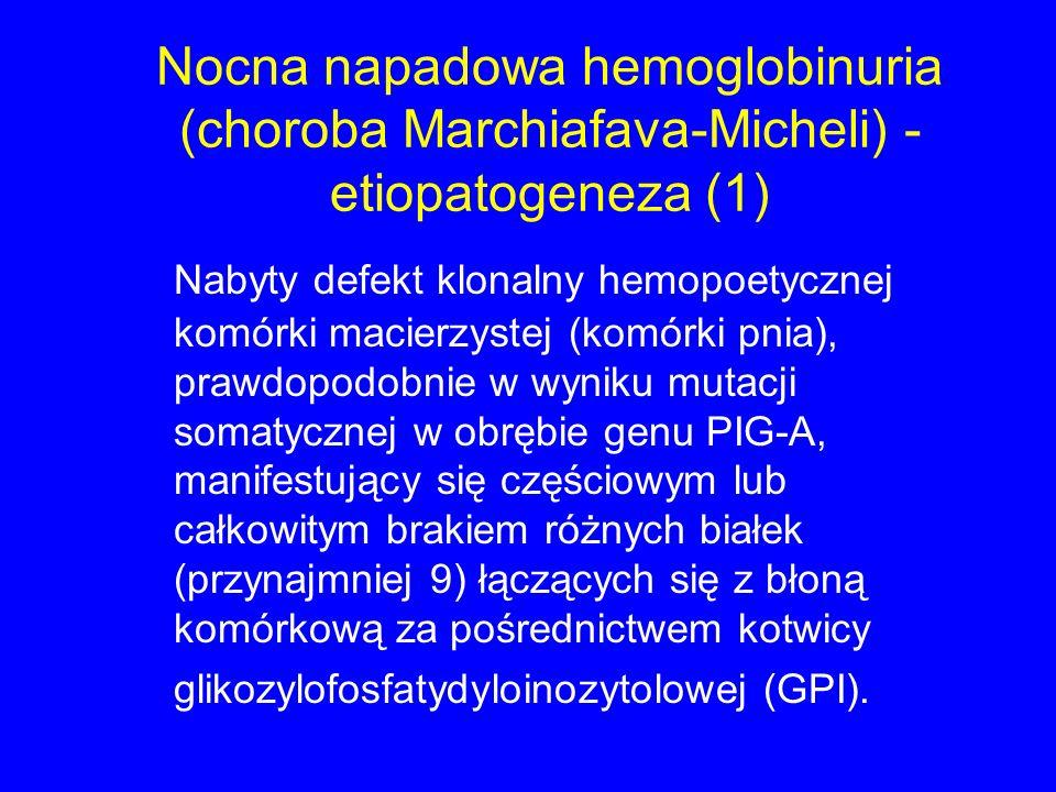Nocna napadowa hemoglobinuria (choroba Marchiafava-Micheli) - etiopatogeneza (1)