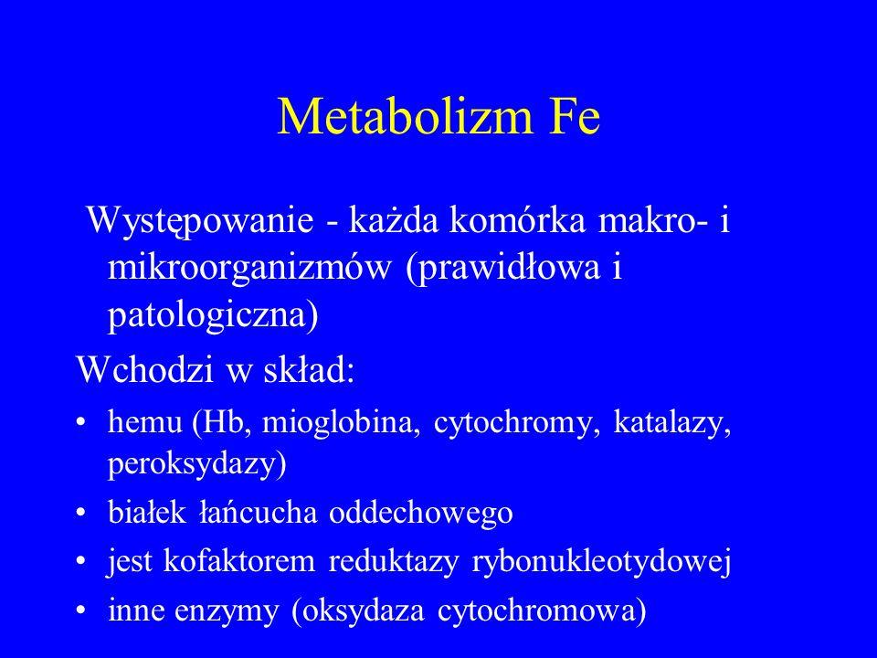 Metabolizm Fe Występowanie - każda komórka makro- i mikroorganizmów (prawidłowa i patologiczna) Wchodzi w skład: