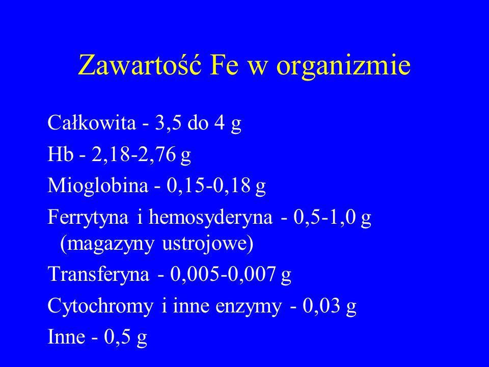 Zawartość Fe w organizmie