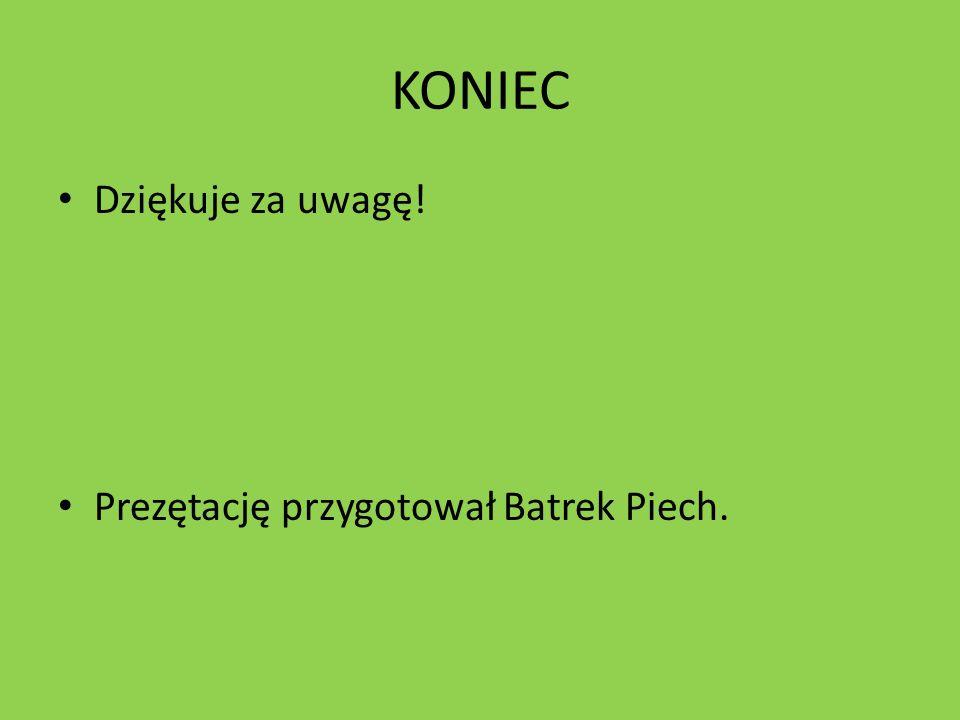 KONIEC Dziękuje za uwagę! Prezętację przygotował Batrek Piech.