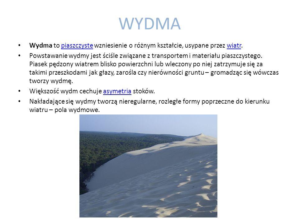 WYDMA Wydma to piaszczyste wzniesienie o różnym kształcie, usypane przez wiatr.