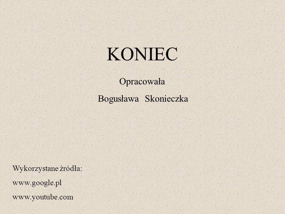 KONIEC Opracowała Bogusława Skonieczka Wykorzystane źródła: