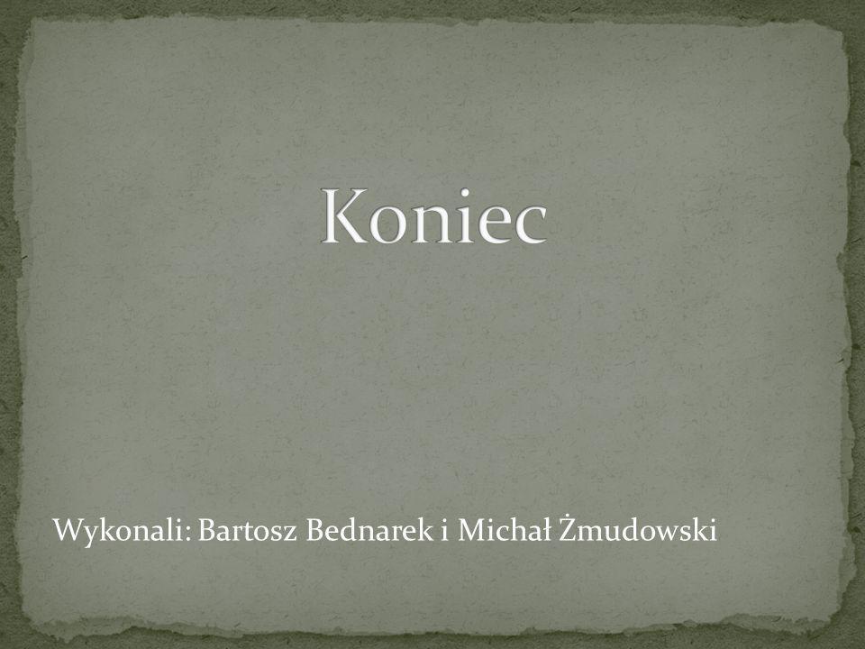 Koniec Wykonali: Bartosz Bednarek i Michał Żmudowski