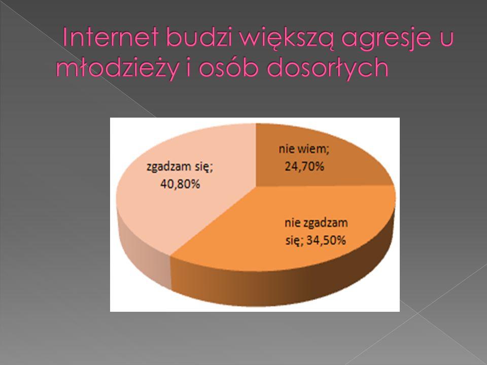 Internet budzi większą agresje u młodzieży i osób dosorłych