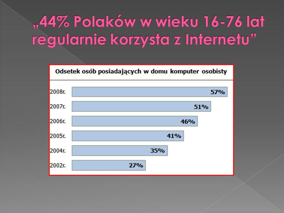 """""""44% Polaków w wieku 16-76 lat regularnie korzysta z Internetu"""