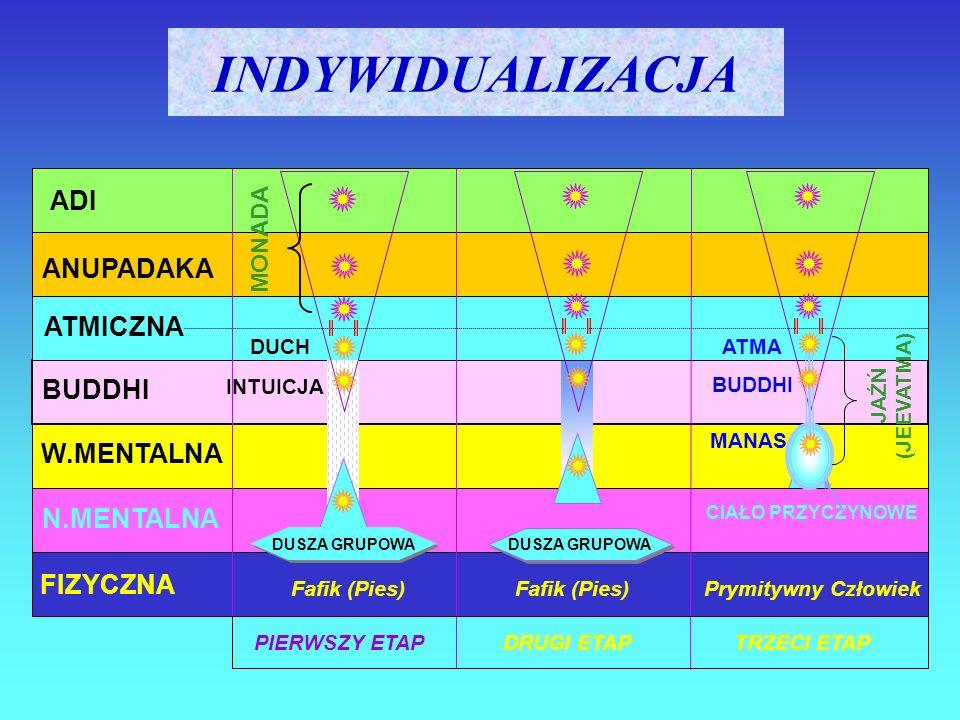 INDYWIDUALIZACJA ADI ANUPADAKA ATMICZNA BUDDHI W.MENTALNA N.MENTALNA