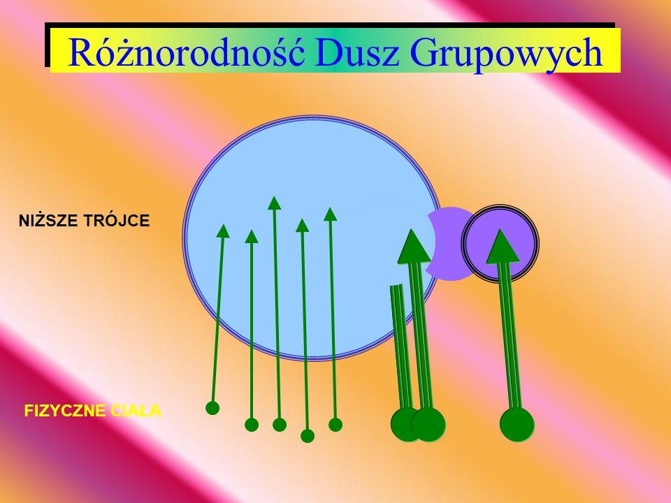 Różnorodność Dusz Grupowych
