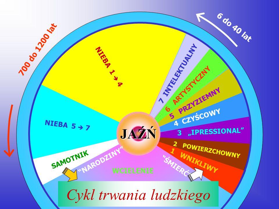 Cykl trwania ludzkiego