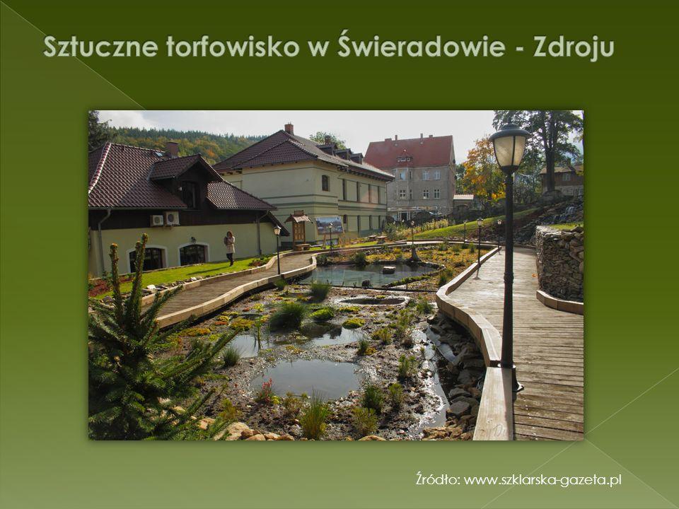 Sztuczne torfowisko w Świeradowie - Zdroju