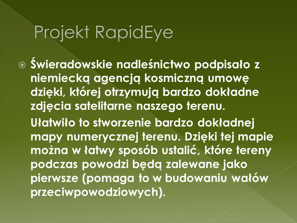 Projekt RapidEye
