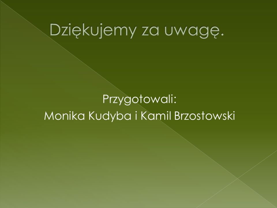 Monika Kudyba i Kamil Brzostowski