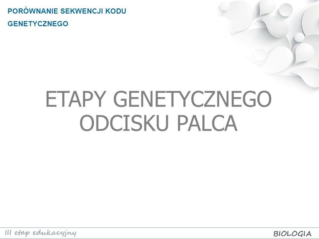 ETAPY GENETYCZNEGO ODCISKU PALCA