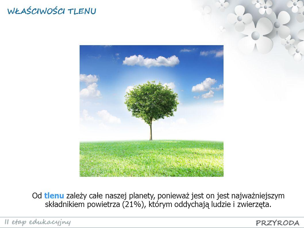 Od tlenu zależy całe naszej planety, ponieważ jest on jest najważniejszym składnikiem powietrza (21%), którym oddychają ludzie i zwierzęta.
