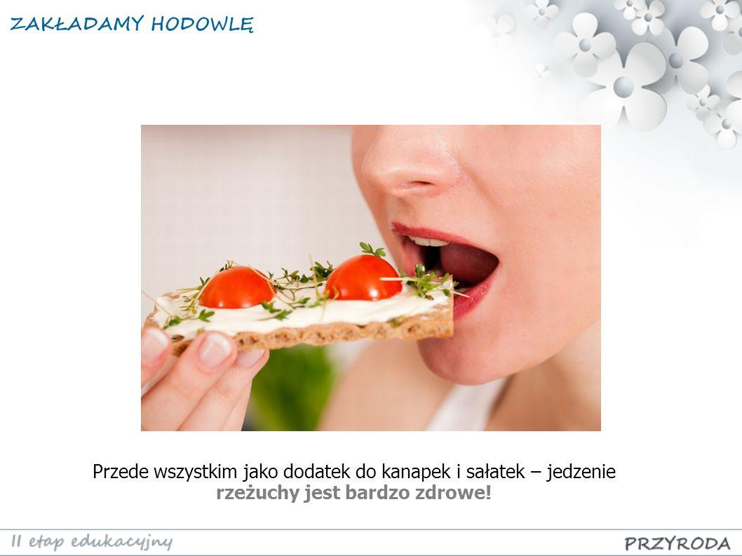 Przede wszystkim jako dodatek do kanapek i sałatek – jedzenie rzeżuchy jest bardzo zdrowe!
