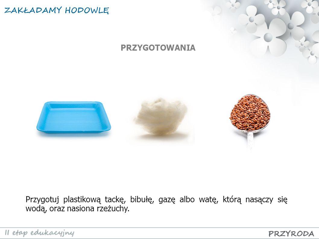 PRZYGOTOWANIA Przygotuj plastikową tackę, bibułę, gazę albo watę, którą nasączy się wodą, oraz nasiona rzeżuchy.