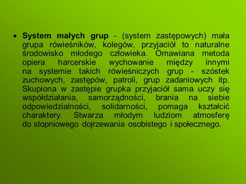 System małych grup - (system zastępowych) mała grupa rówieśników, kolegów, przyjaciół to naturalne środowisko młodego człowieka. Omawiana metoda opiera harcerskie wychowanie między innymi na systemie takich rówieśniczych grup - szóstek zuchowych, zastępów, patroli, grup zadaniowych itp. Skupiona w zastępie grupka przyjaciół sama uczy się współdziałania, samorządności, brania na siebie odpowiedzialności, solidarności, pomaga kształcić charaktery. Stwarza młodym ludziom atmosferę do stopniowego dojrzewania osobistego i społecznego.