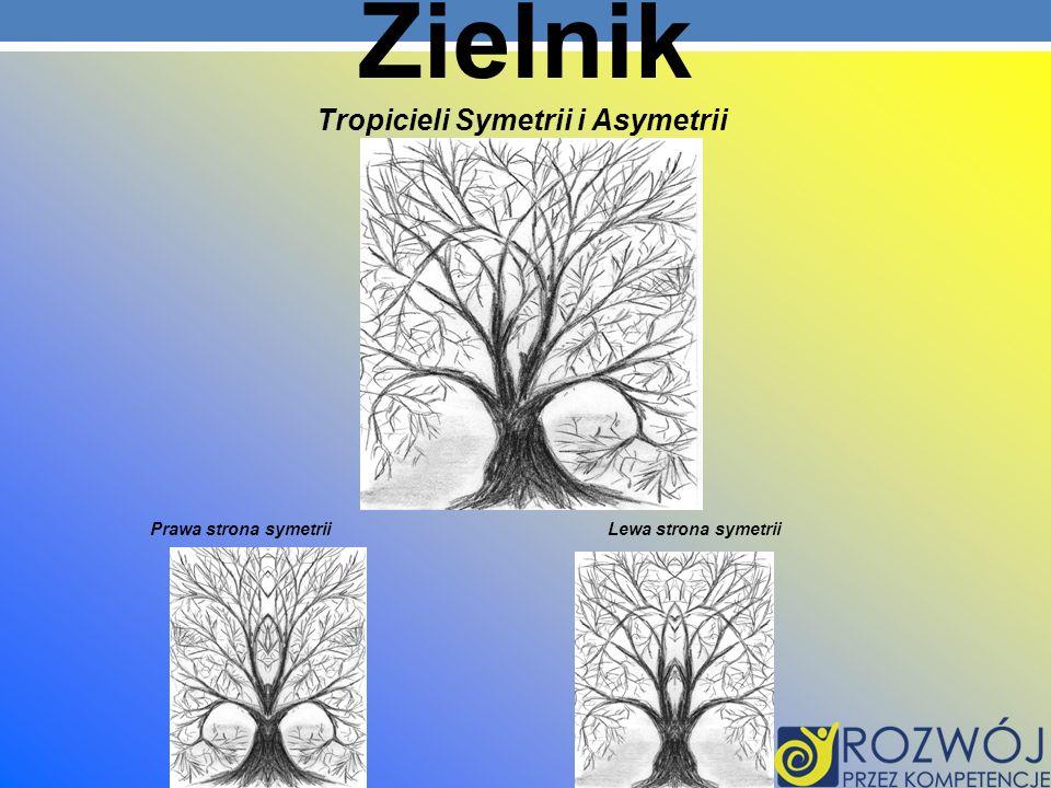 Tropicieli Symetrii i Asymetrii