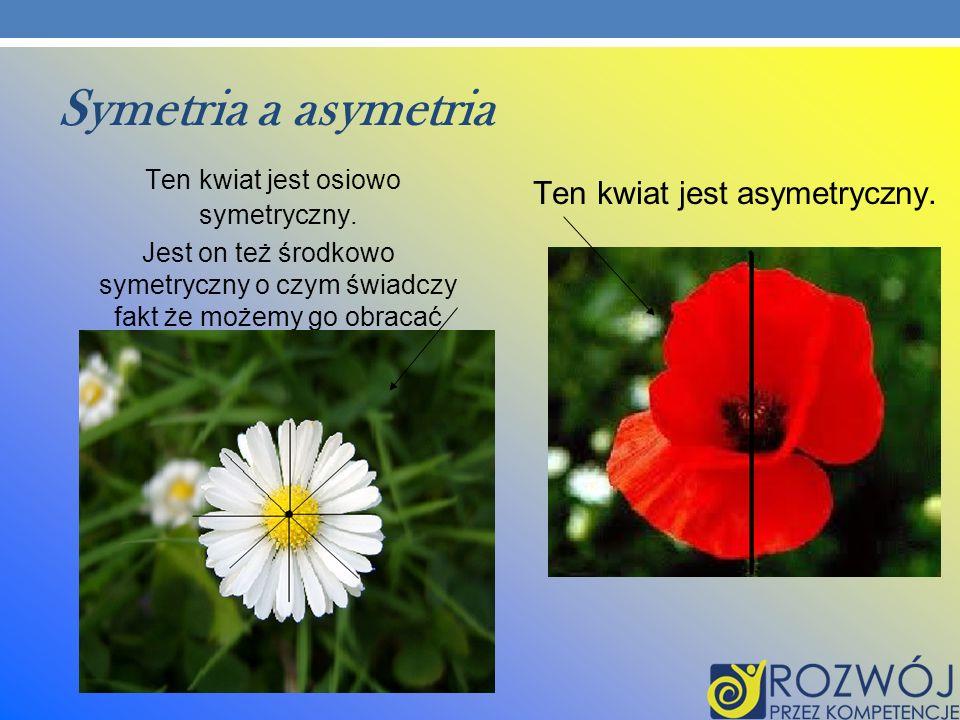 Symetria a asymetria Ten kwiat jest osiowo symetryczny.