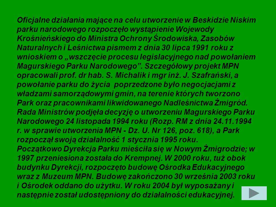 """Oficjalne działania mające na celu utworzenie w Beskidzie Niskim parku narodowego rozpoczęło wystąpienie Wojewody Krośnieńskiego do Ministra Ochrony Środowiska, Zasobów Naturalnych i Leśnictwa pismem z dnia 30 lipca 1991 roku z wnioskiem o """"wszczęcie procesu legislacyjnego nad powołaniem Magurskiego Parku Narodowego . Szczegółowy projekt MPN opracowali prof. dr hab. S. Michalik i mgr inż. J. Szafrański, a powołanie parku do życia poprzedzone było negocjacjami z władzami samorządowymi gmin, na terenie których tworzono Park oraz pracownikami likwidowanego Nadleśnictwa Żmigród."""