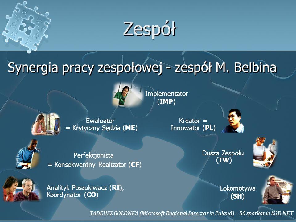 Zespół Synergia pracy zespołowej - zespół M. Belbina Implementator
