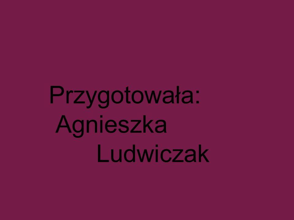 Przygotowała: Agnieszka Ludwiczak