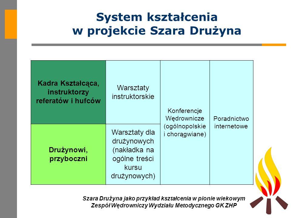 System kształcenia w projekcie Szara Drużyna