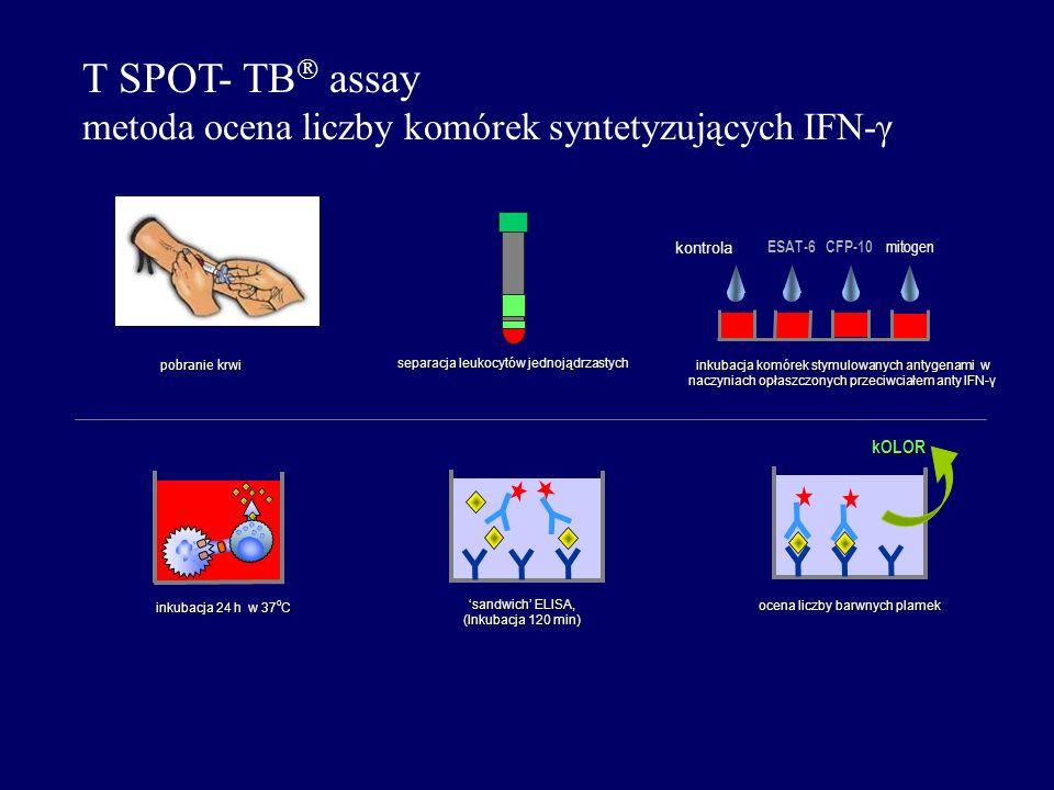 T SPOT- TB assay metoda ocena liczby komórek syntetyzujących IFN-γ