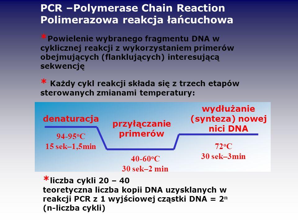 wydłużanie (synteza) nowej nici DNA przyłączanie primerów