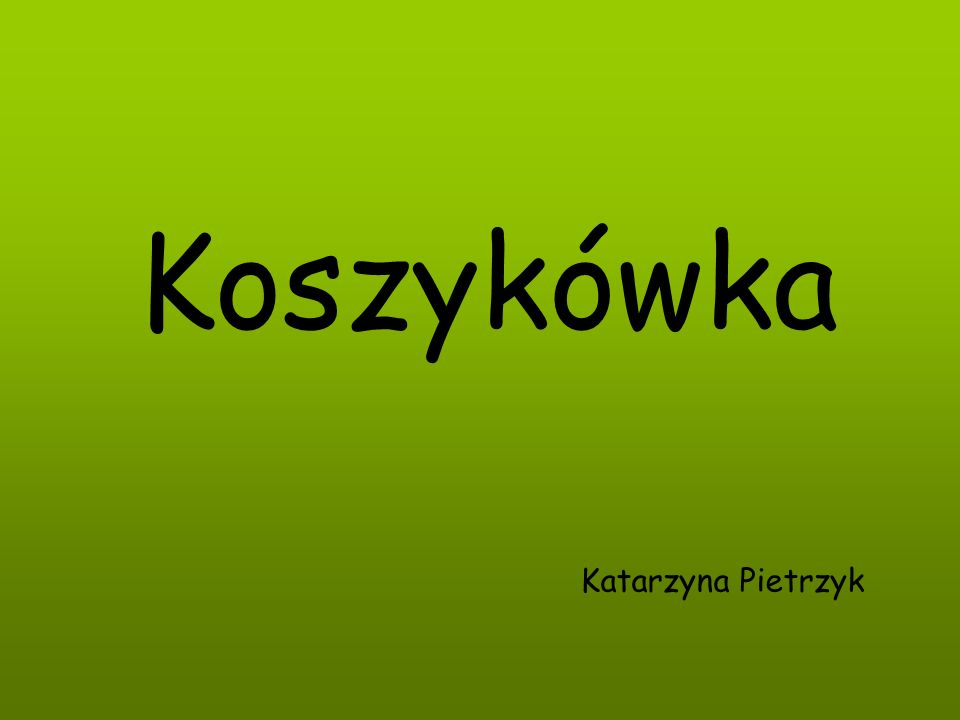 Koszykówka Katarzyna Pietrzyk