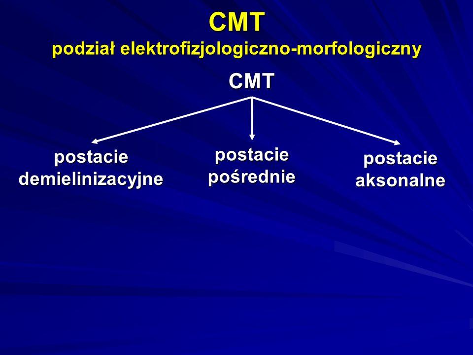 CMT podział elektrofizjologiczno-morfologiczny