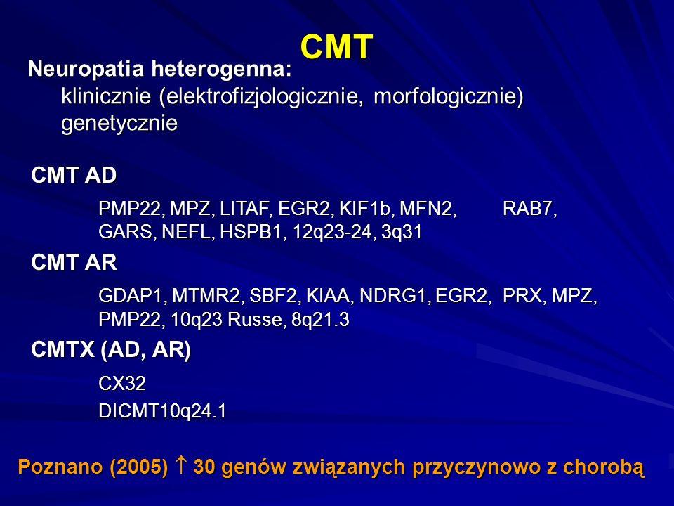 CMT Neuropatia heterogenna:
