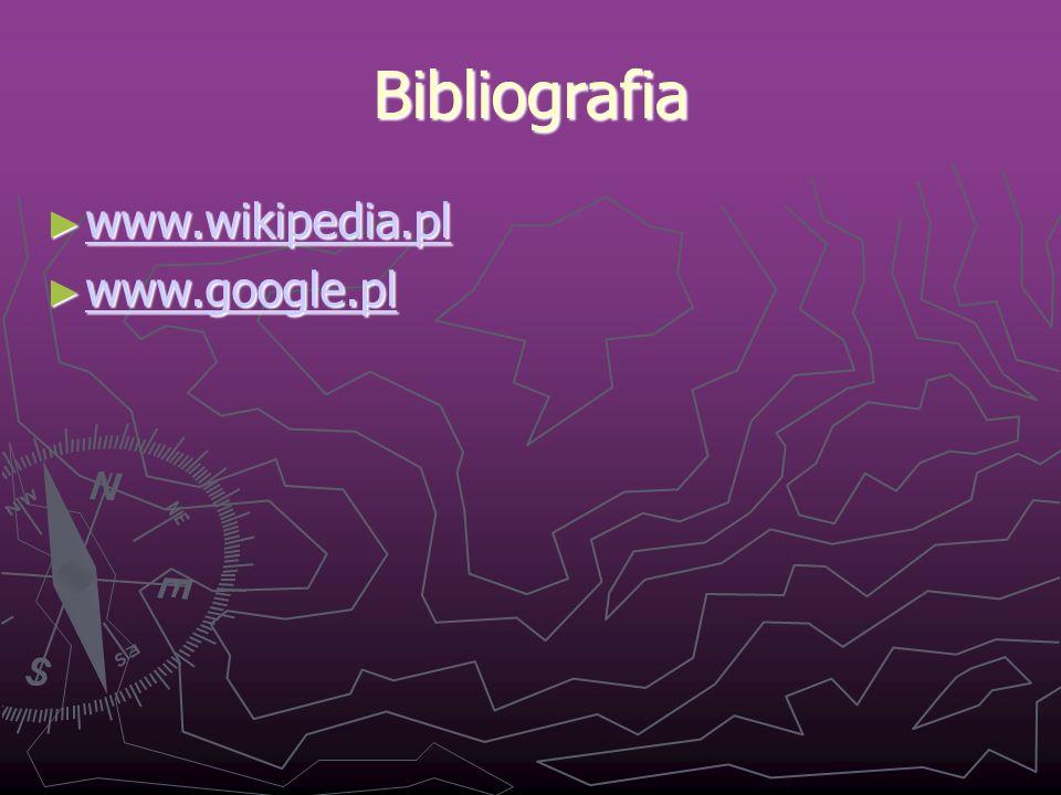 Bibliografia www.wikipedia.pl www.google.pl