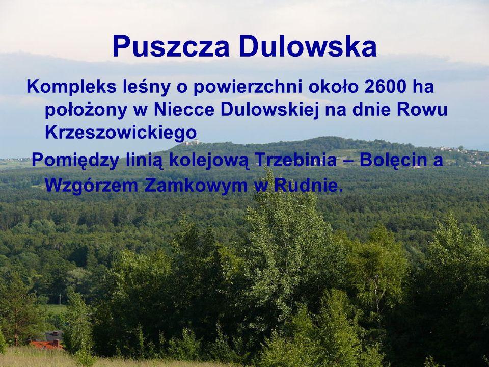 Puszcza DulowskaKompleks leśny o powierzchni około 2600 ha położony w Niecce Dulowskiej na dnie Rowu Krzeszowickiego.