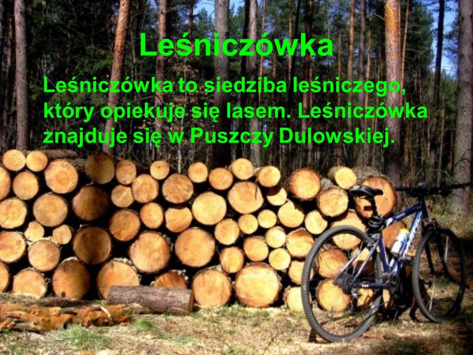 Leśniczówka Leśniczówka to siedziba leśniczego, który opiekuje się lasem.
