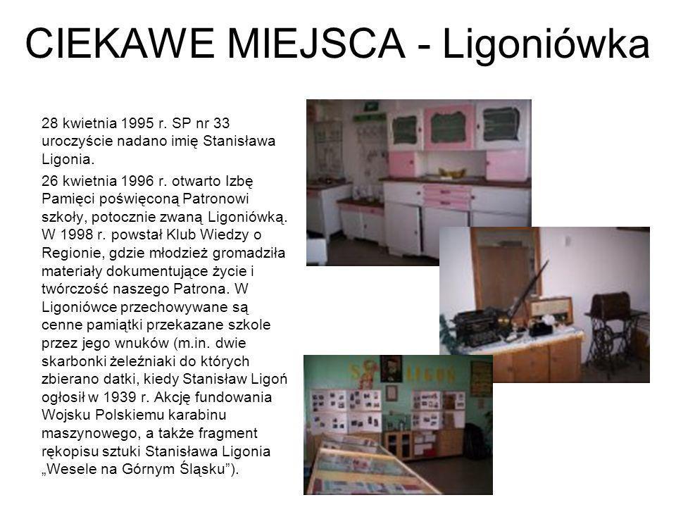 CIEKAWE MIEJSCA - Ligoniówka