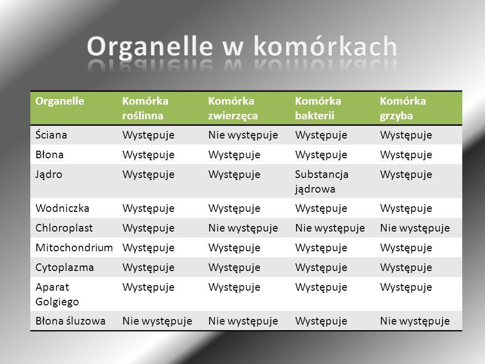 Organelle w komórkach Organelle Komórka roślinna Komórka zwierzęca